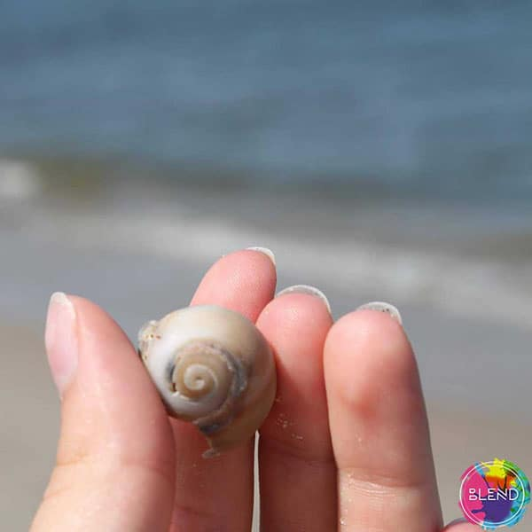 A person carrying a small shell at the beach while doing one of many helpful de-stress activities.