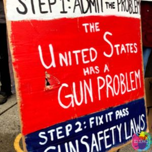 Guns in America – Voices