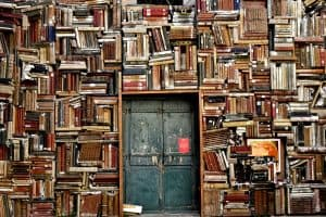 diversity literature