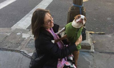 A girl with dark hair and glasses, smiling while sitting on the sidewalk playing with a brown and white dog wearing a green sweater.