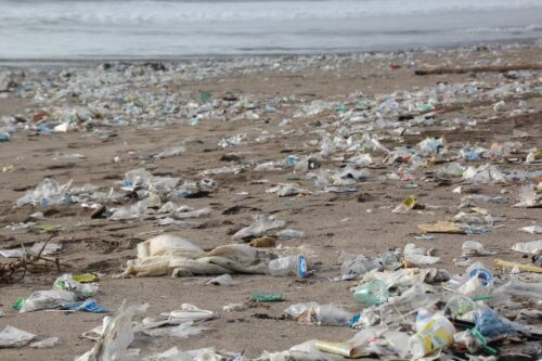 A beach with lots of trash on the sand.