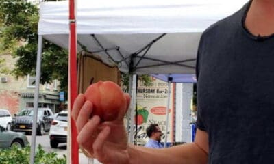 A person eating a peach outside at a farmers market