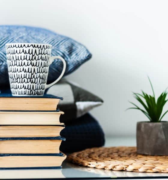 A stack of books, a mug, pillows, and mini plants