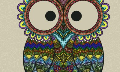 a colorful drawing of an owl