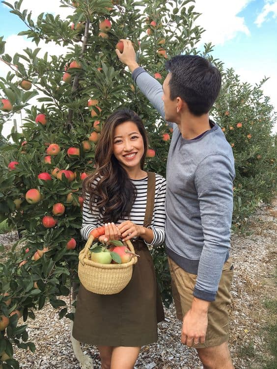 A couple picking apples