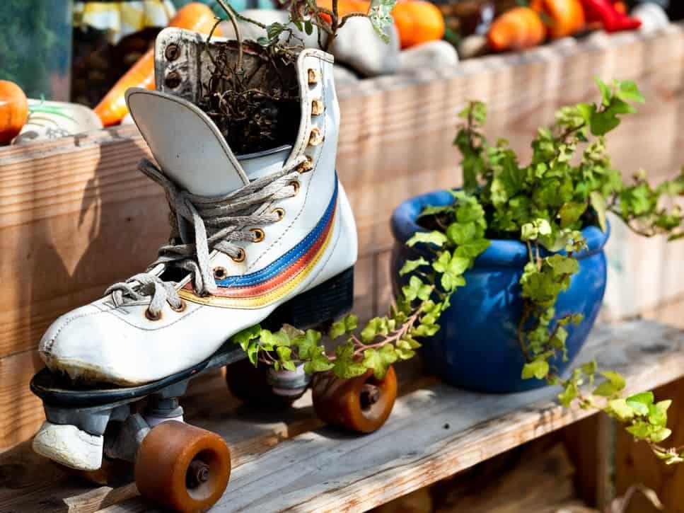 White roller skates besides a green plant