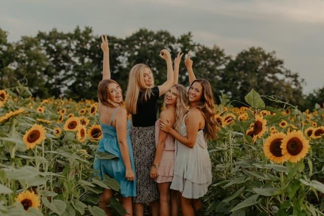 Four girls in a sunflower field
