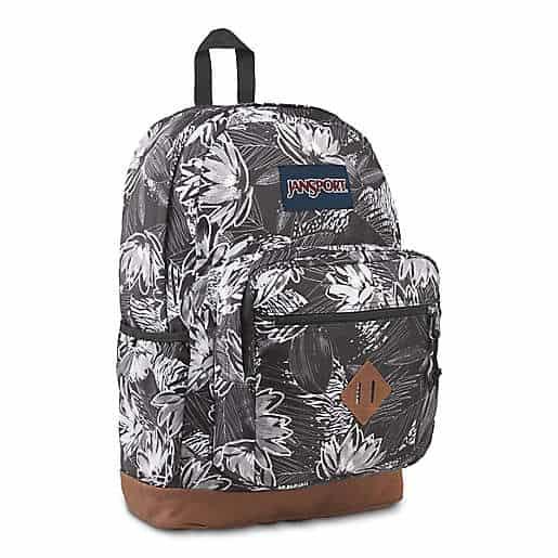 JanSport® City View Backpack in Black Agave Zebra