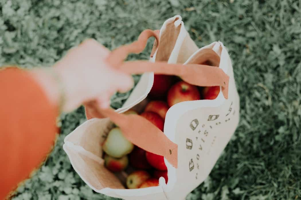 A person holding a bag of apples